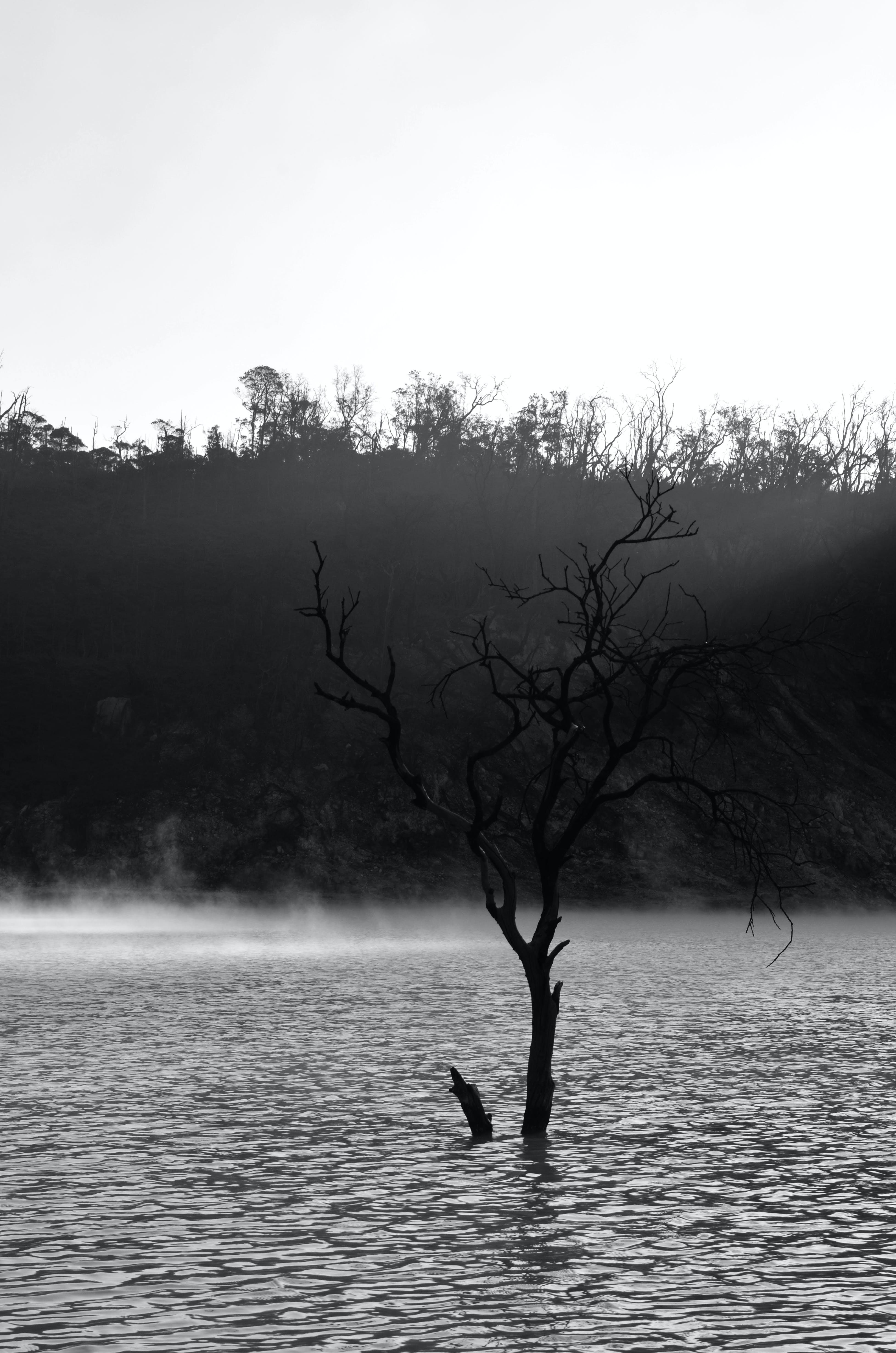 Gratis lagerfoto af bjerg, krater, lanscape, sort og hvid