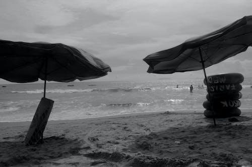 Foto profissional grátis de guarda-chuva, litoral, mar