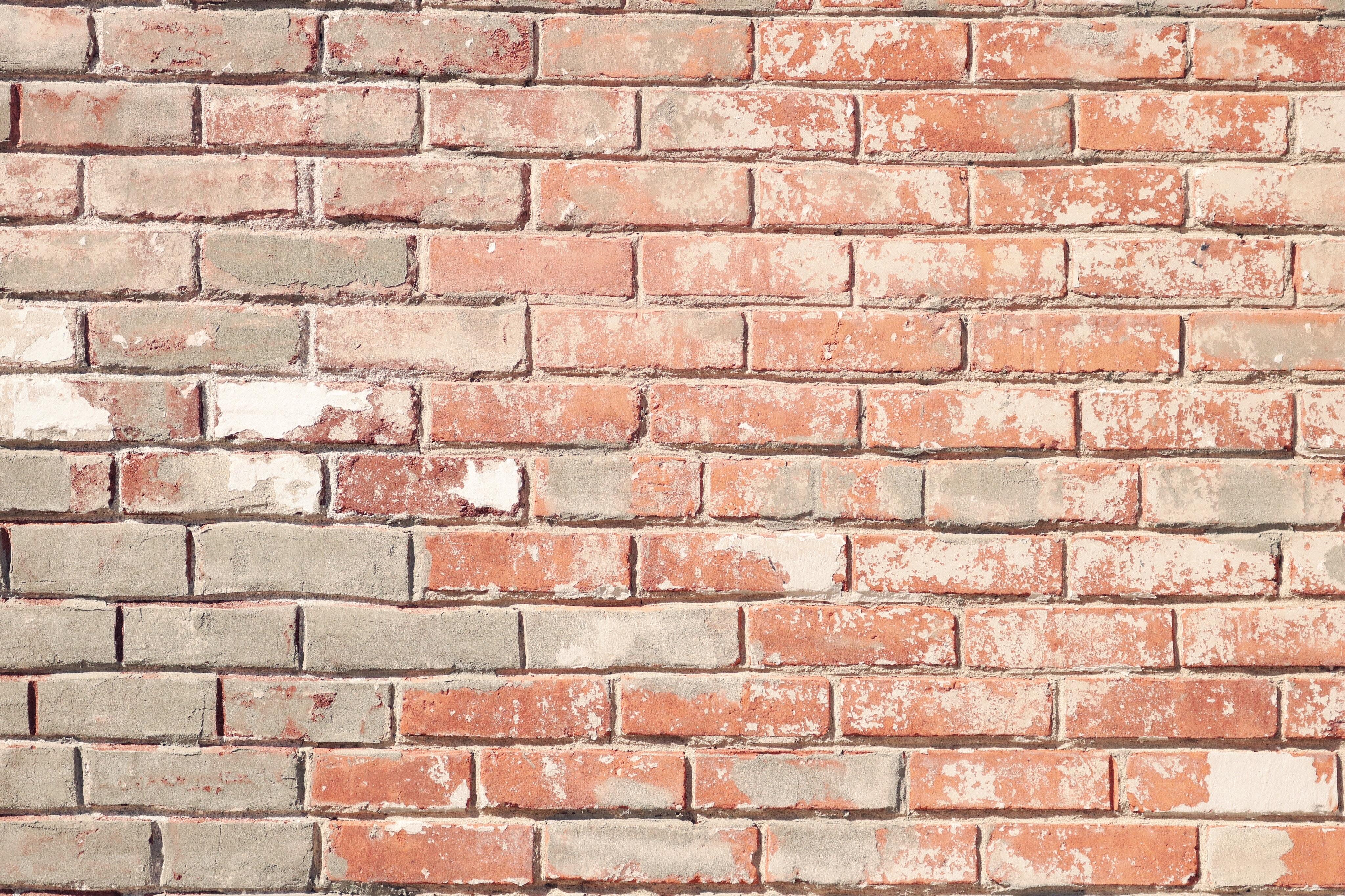 Wall Bricks 183 Free Stock Photo