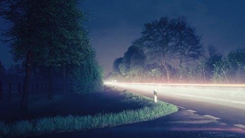 Бесплатное стоковое фото с carlights, вечер, деревья, дорога
