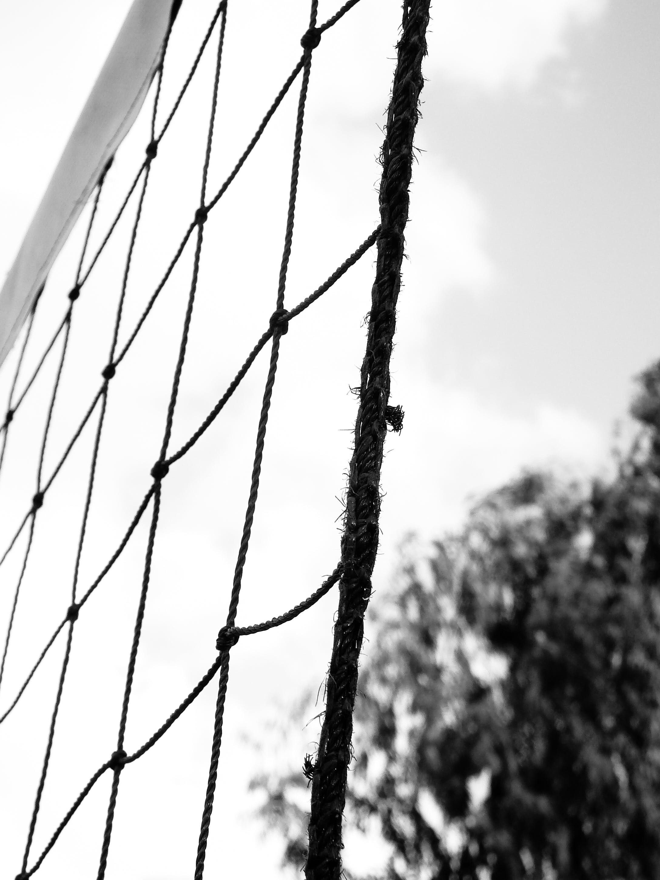 Free stock photo of Adobe Photoshop, adventure, art, black and white