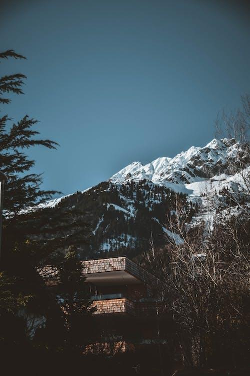 błękitne niebo, dom, drewno