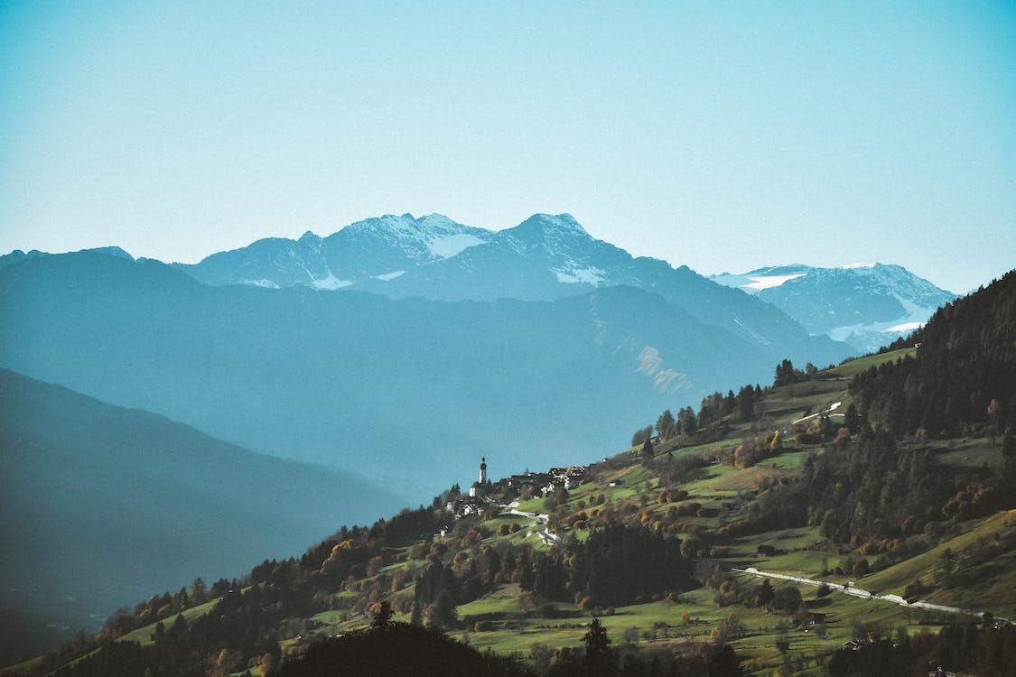 Alpi, arbori, ceață