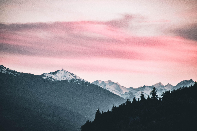 desktop wallpaper · pexels · free stock photos