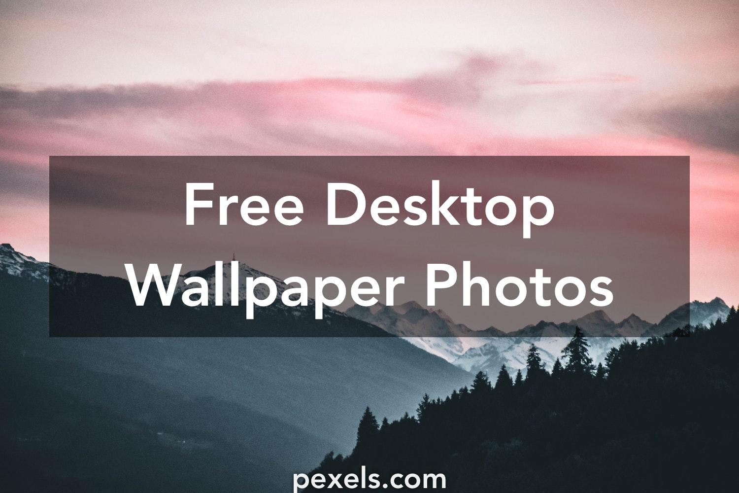 Desktop Wallpaper Pexels Free Stock Photos
