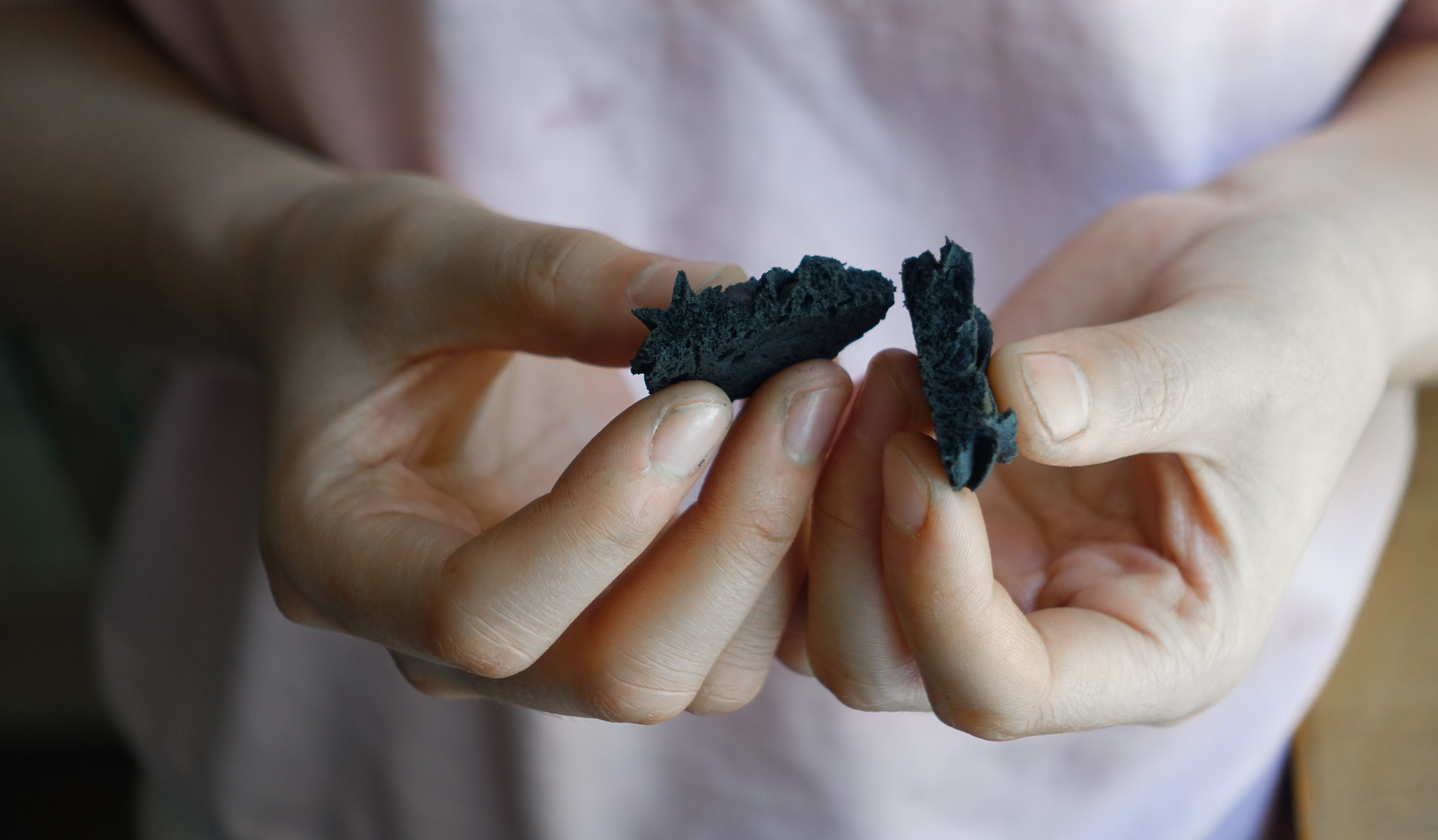 Person's Hand Holding Black Biscuit