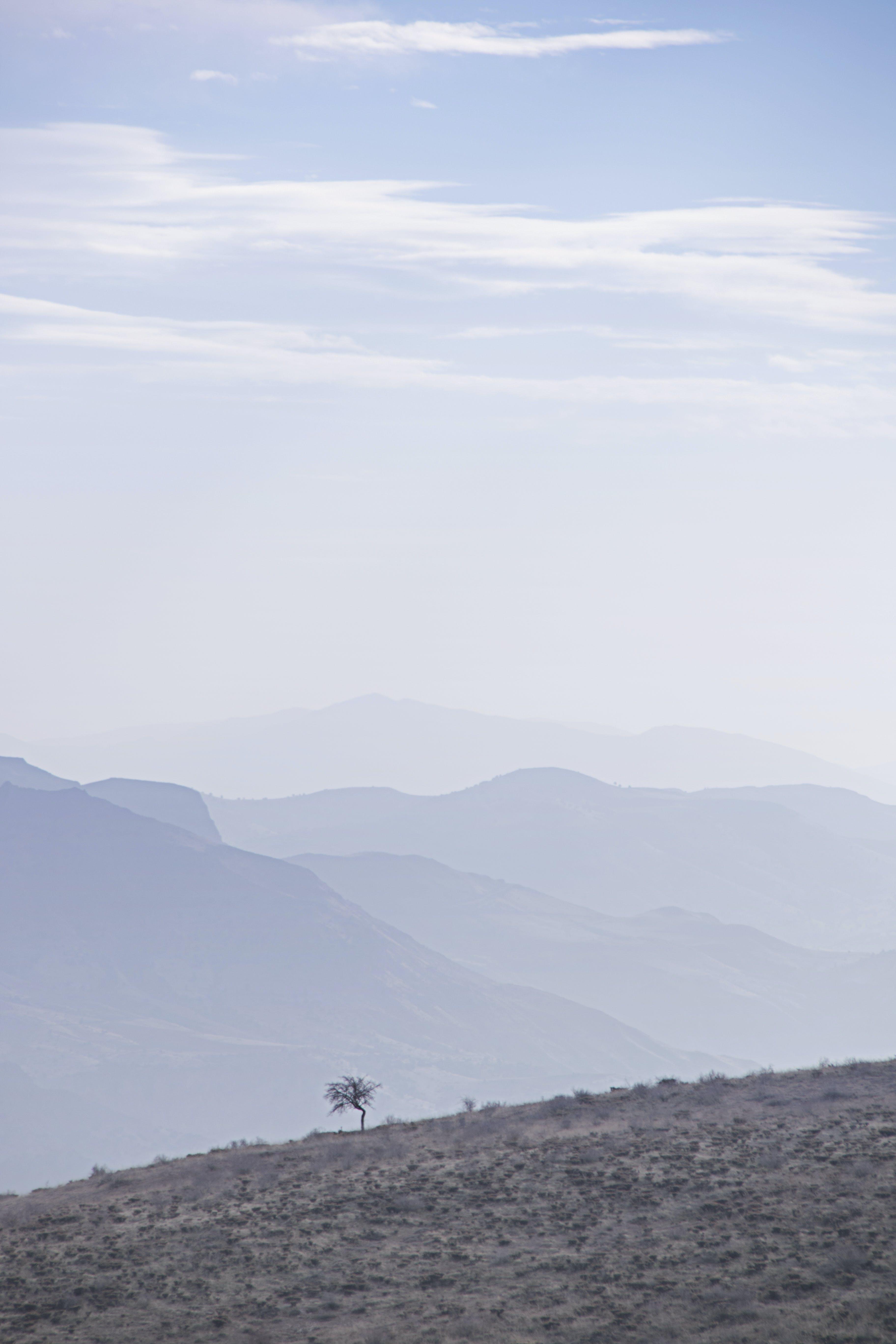 Free stock photo of alone, alone tree, fag, mountains