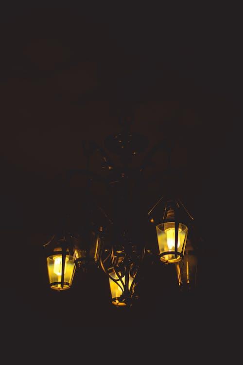 bombillas, brillante, candelabro