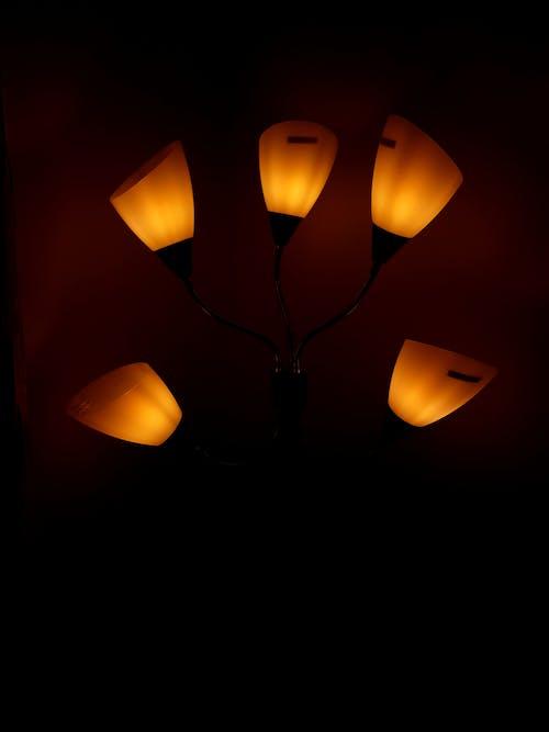 Free stock photo of desk lamp, lamp