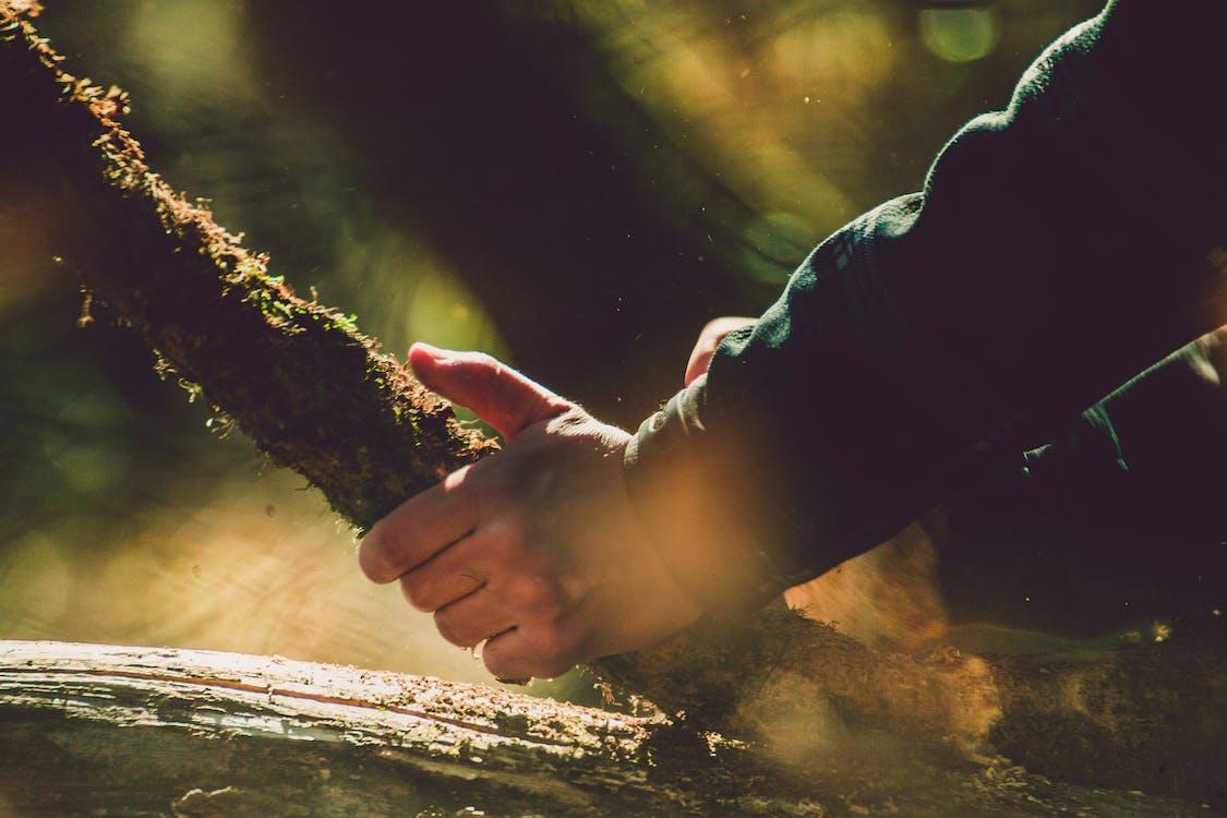 käsi, keskittyminen, lähikuva