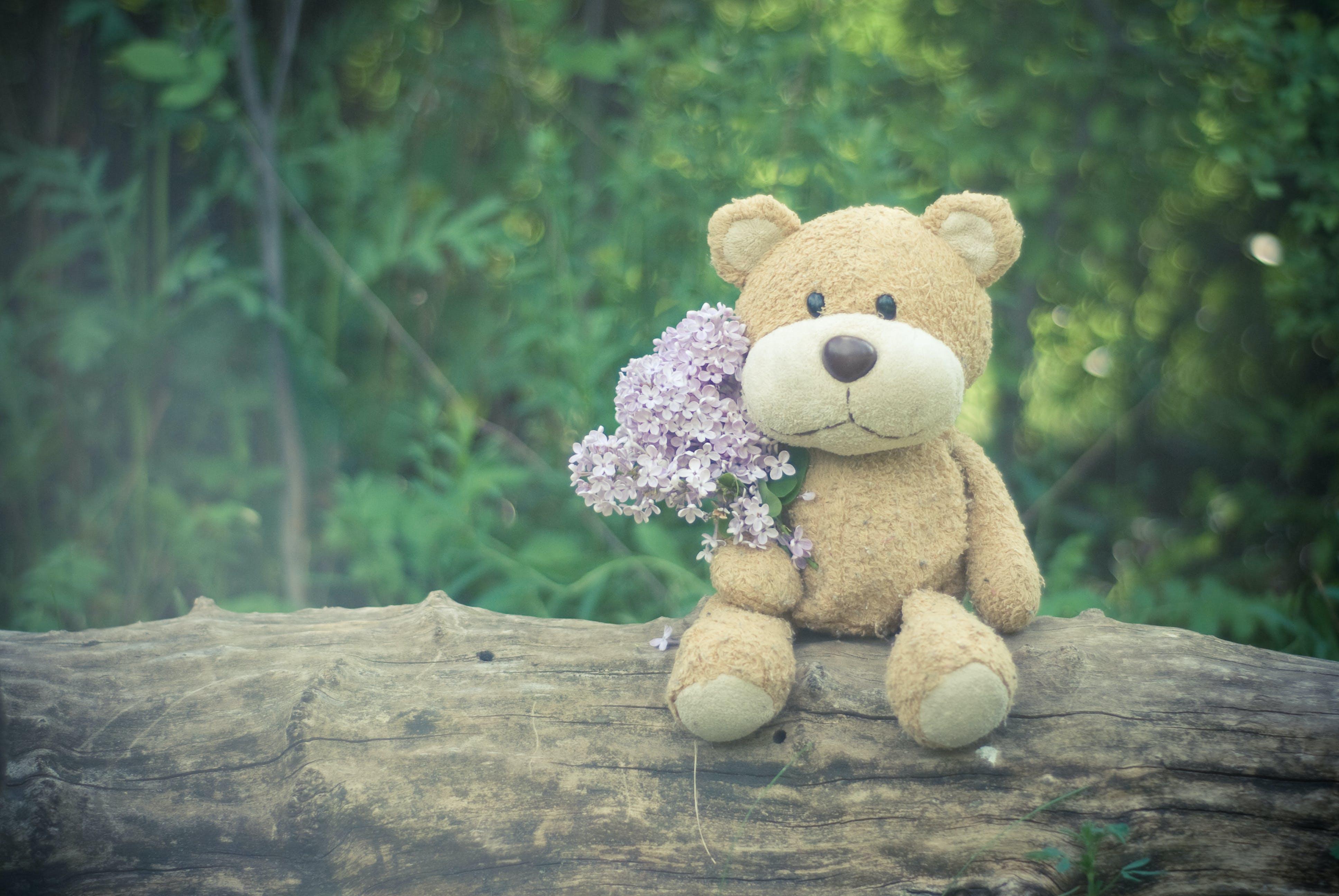 Brown Teddy Bear Holding Pink Flower Bouquet