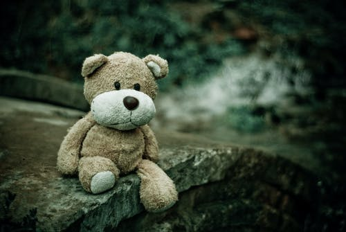 Brown Teddy Bear Sitting on Edge of Pavement