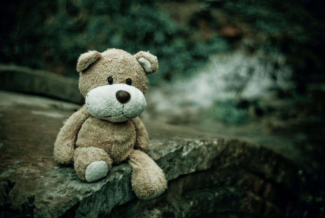 Brown Teddy Bear Sitting on Edge of Pavement