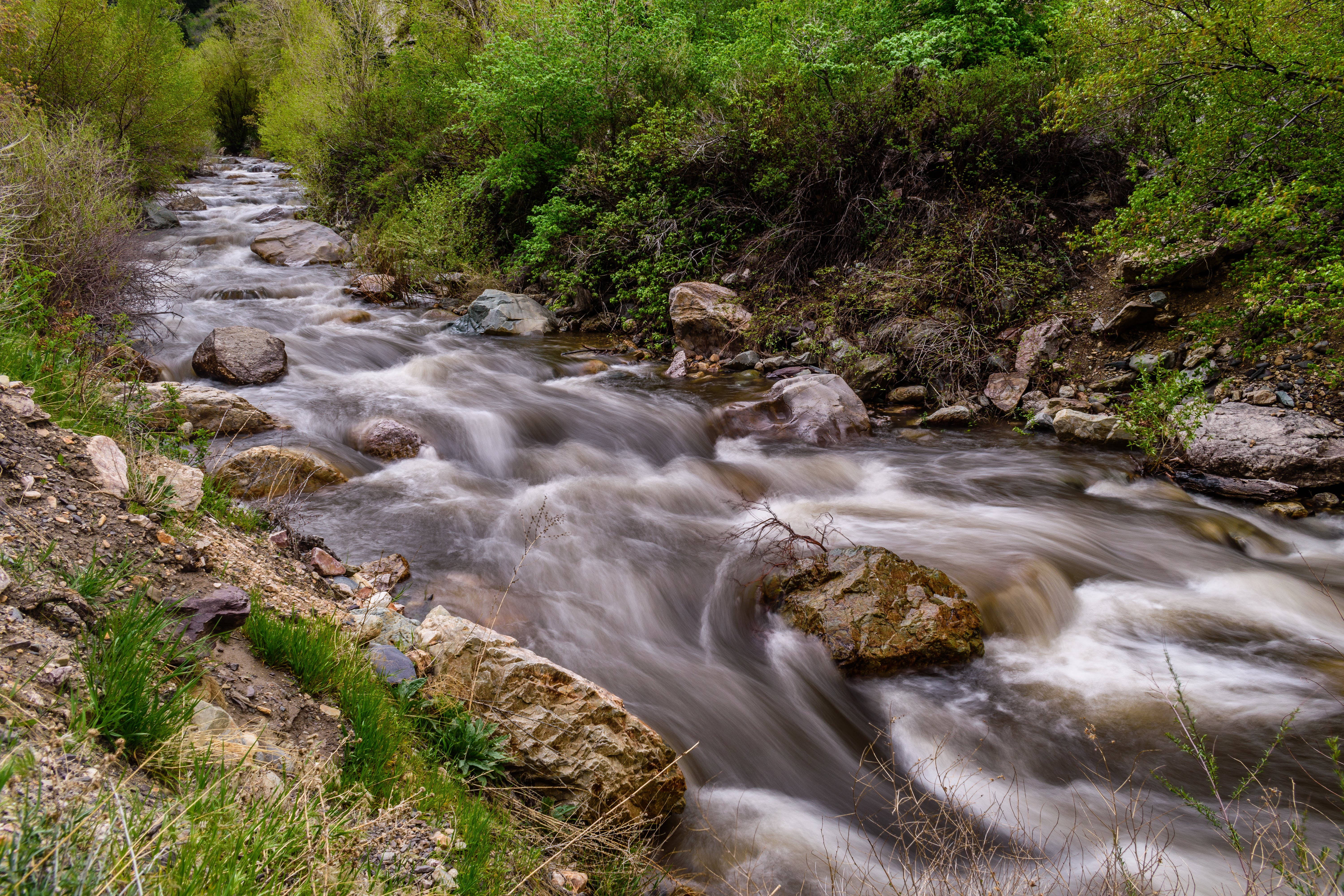 Photography of Creek