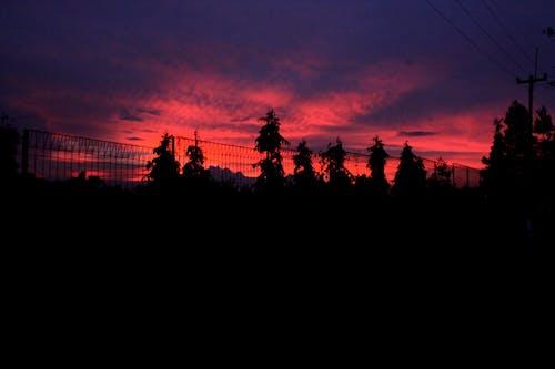 lanscape, rilex, siluet, 傍晚的太陽 的 免费素材照片