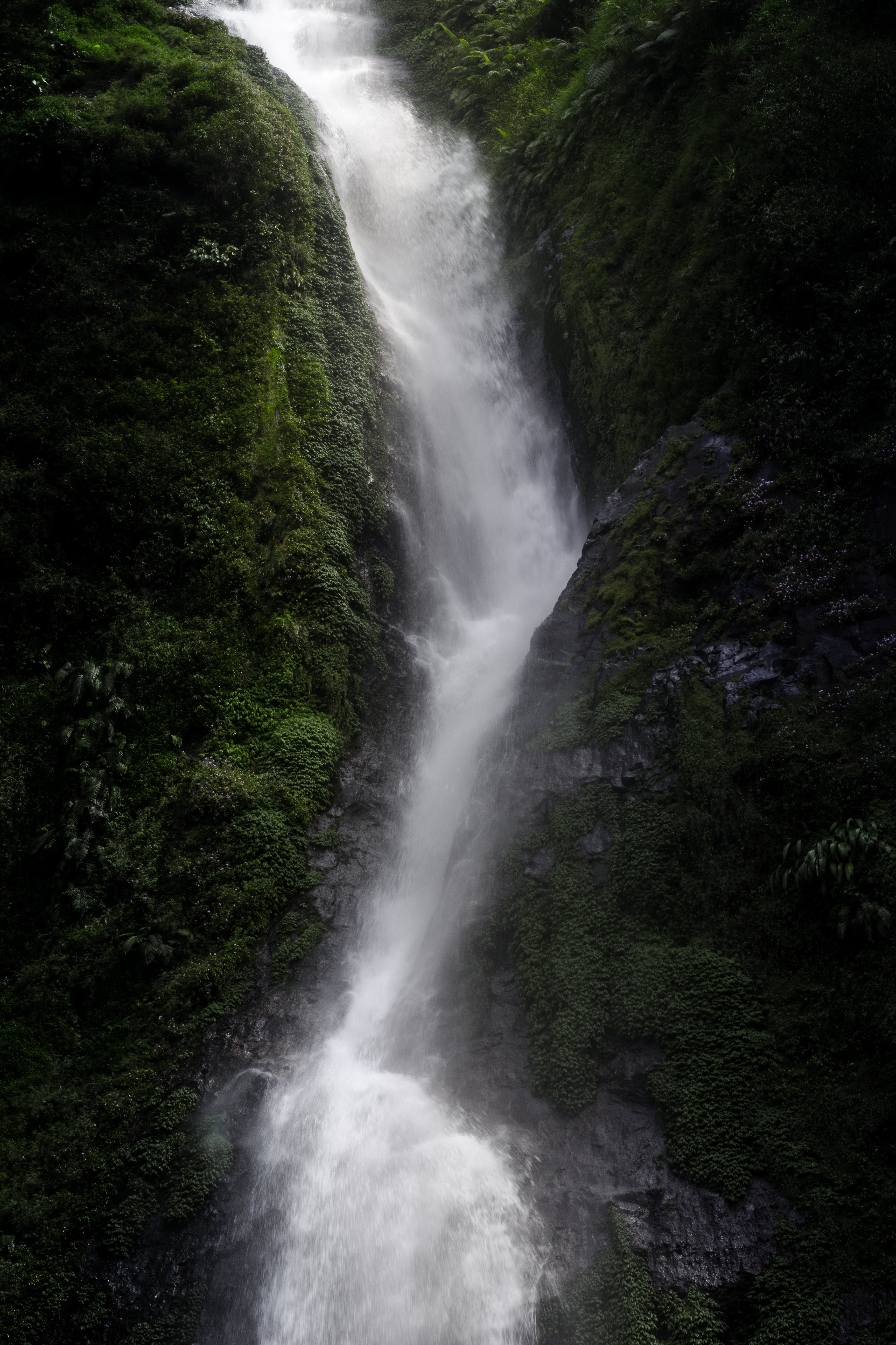 Photography of Waterfall