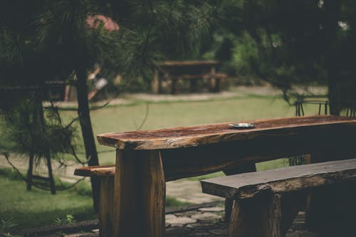 Photos gratuites de arbre, banc, bois, clarté