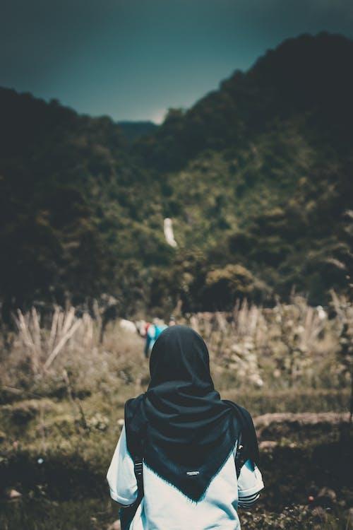 Безкоштовне стокове фото на тему «вид ззаду, Віньєтка, вуаль, гора»