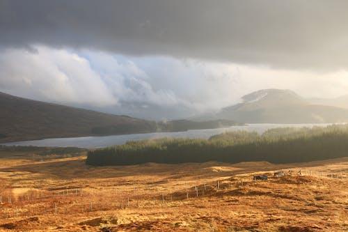Darmowe zdjęcie z galerii z szkocja