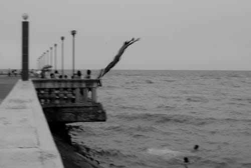 Бесплатное стоковое фото с волны, игра, море, нырять