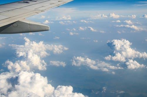 Immagine gratuita di aereo, aereo di linea, aeroplano, ala