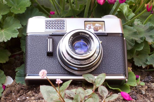 Free stock photo of camara, fotografia, fotografiando