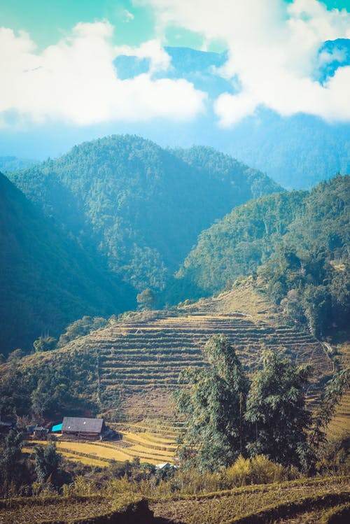 Photos gratuites de arbres, ciel, colline, environnement