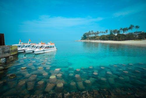 Foto d'estoc gratuïta de aigua, badia, cel, embarcació d'aigua