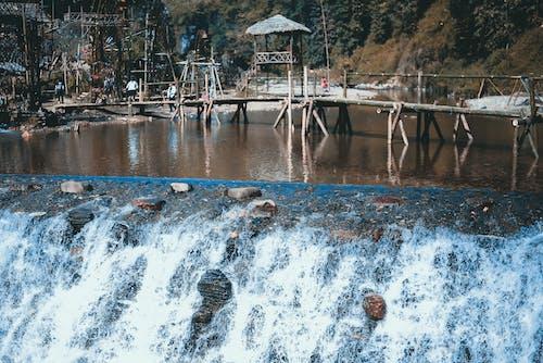 Photos gratuites de arbres, cailloux, cascade, eau