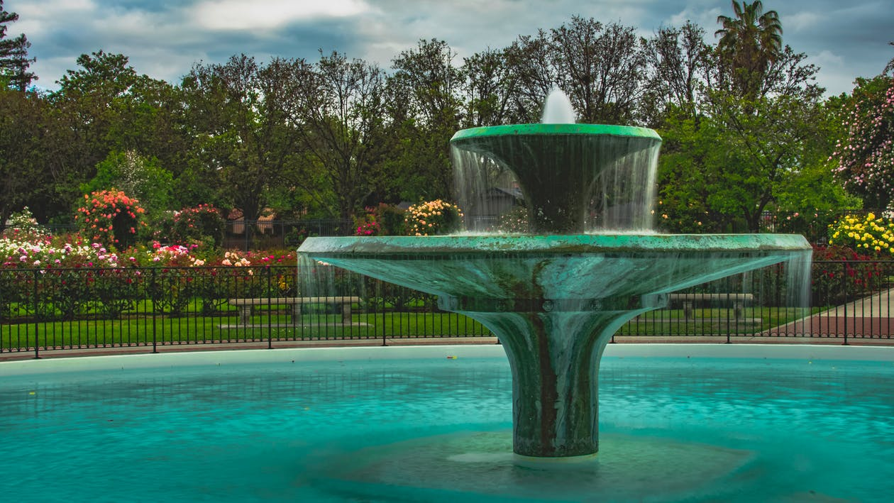 噴泉, 玫瑰, 花園