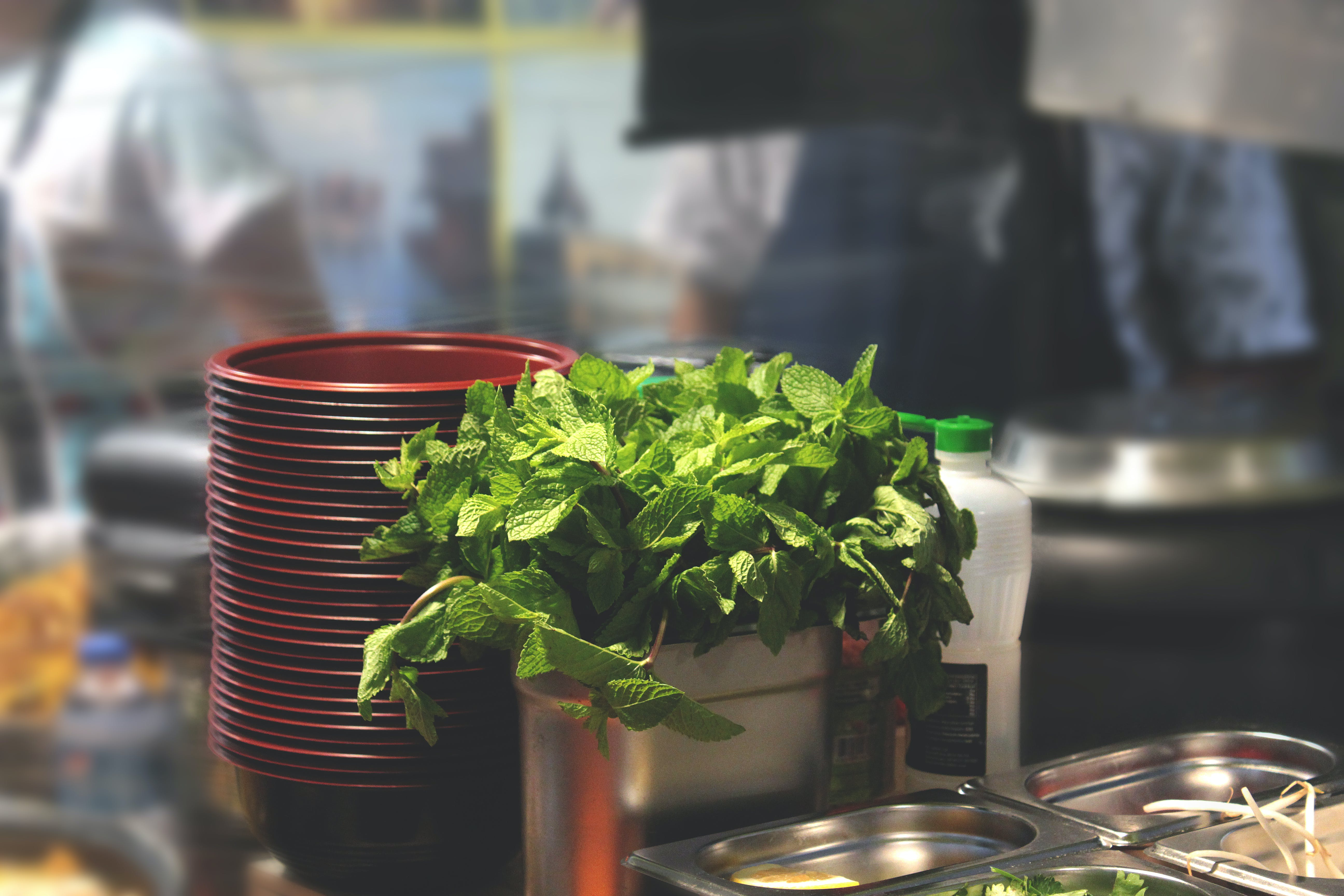 Green Leaf Plant Beside Bowl and Bain-marie