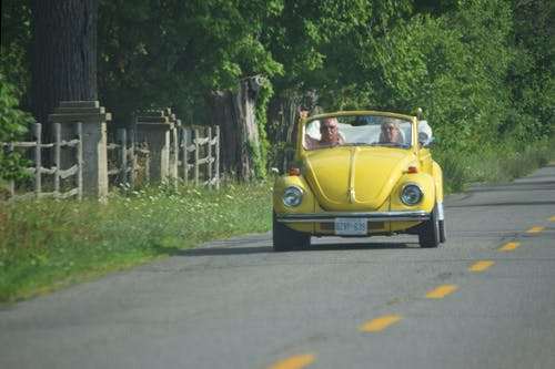 Free stock photo of vw beetle