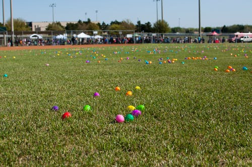 Free stock photo of easter, easter egg, easter egg hunt, easter eggs