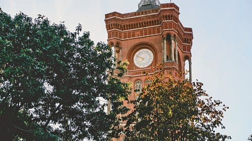 Clock Tower Near Trees at Daytime Photo