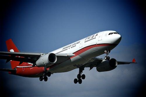 Gratis lagerfoto af fly, flyrejse, flyvemaskine, himmel