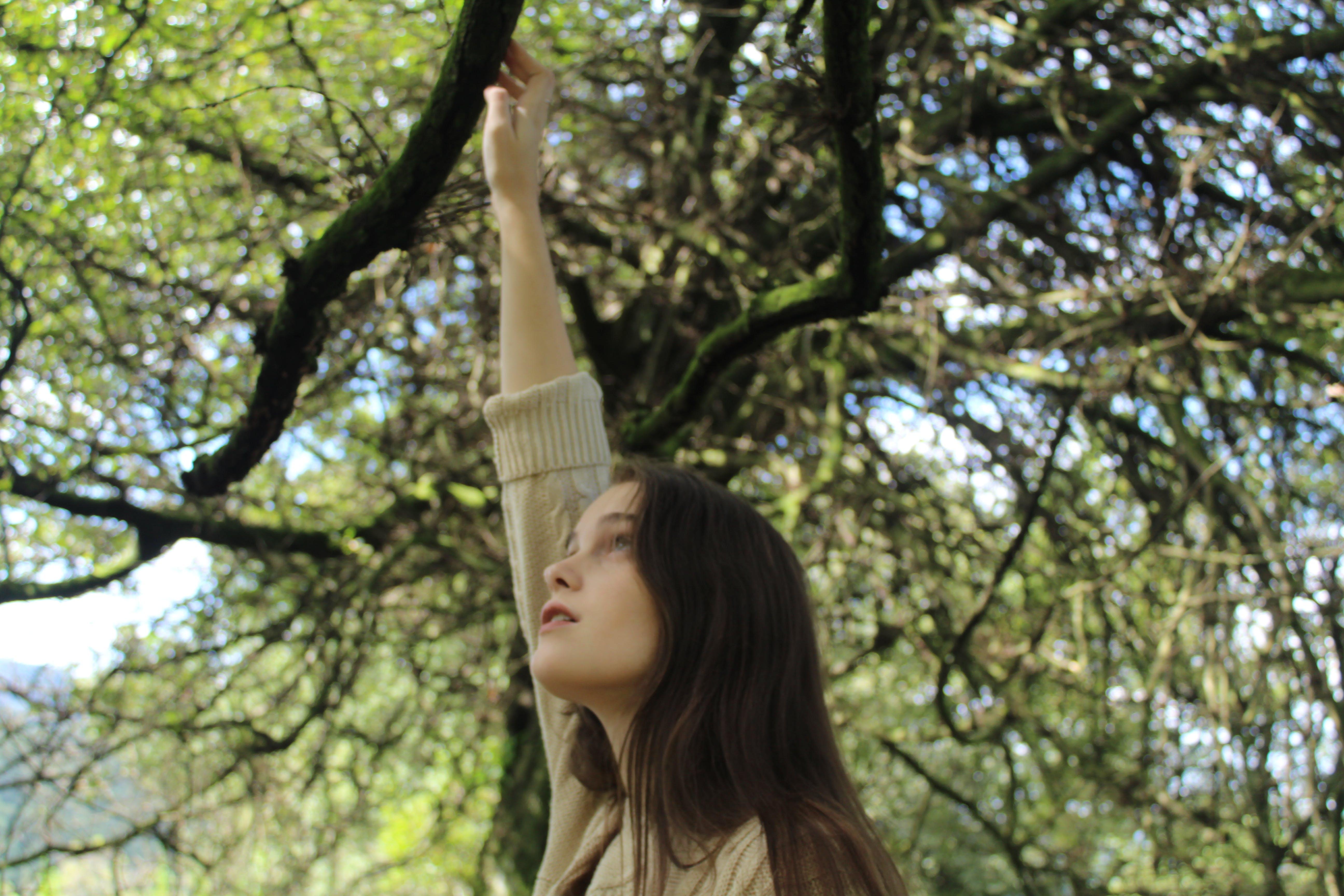 Woman in Brown Half-sleeved Shirt Reaching Black Bare Tree