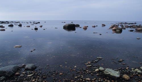 Gratis stockfoto met getij, h2o, kust, landschap