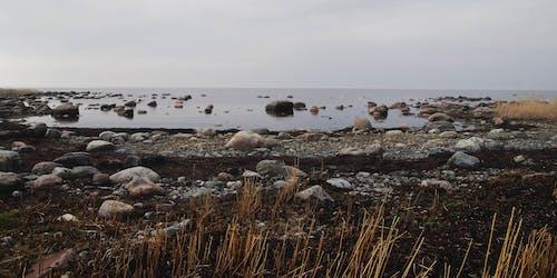 Безкоштовне стокове фото на тему «берег, берег моря, відлив, вода»