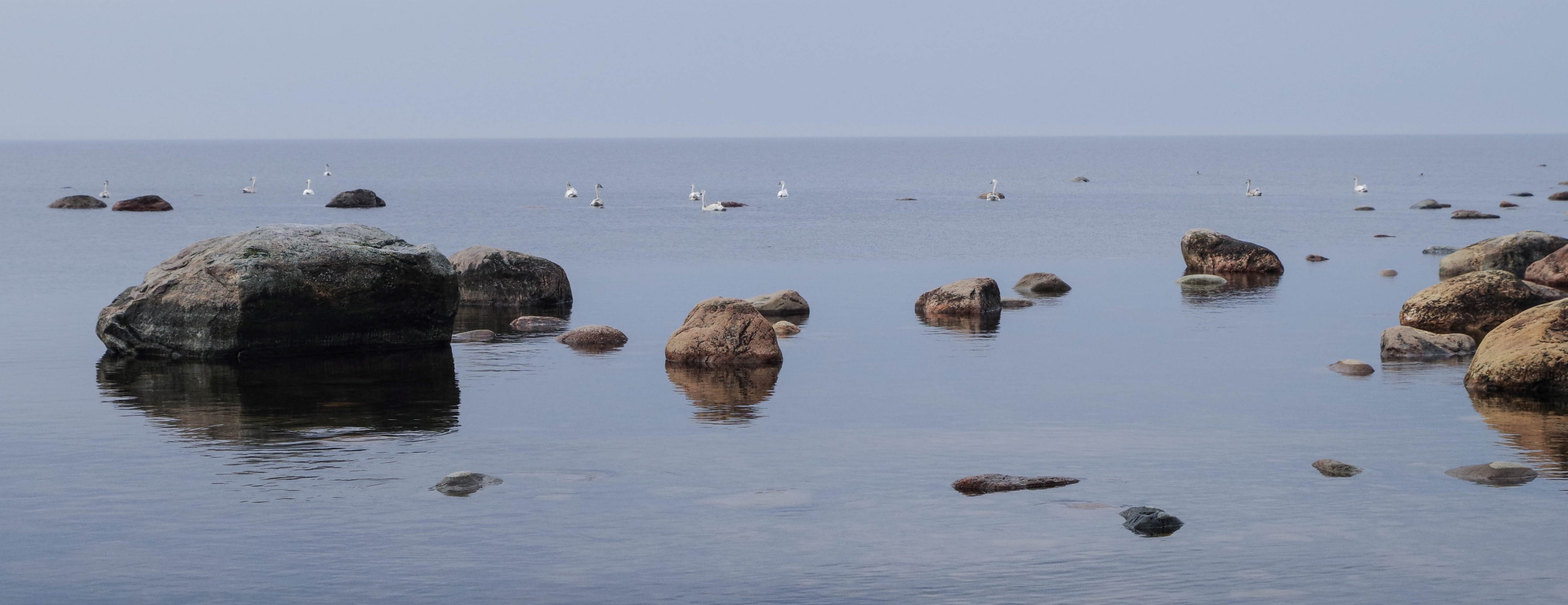 Photography of Brown Rocks Near Body of Water at Daytime