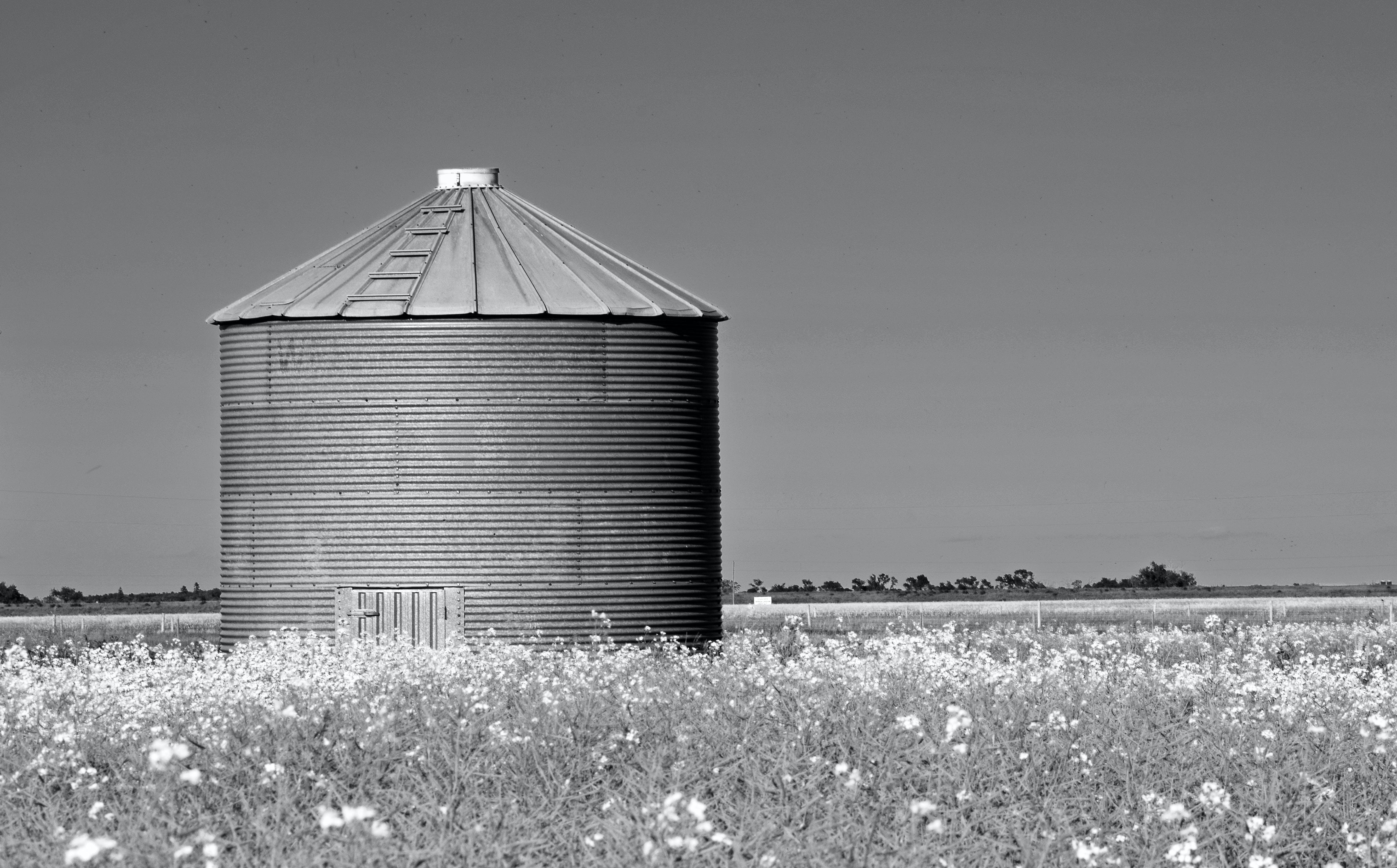 Imagine de stoc gratuită din alb-negru, arhitectură, câmp, clădire