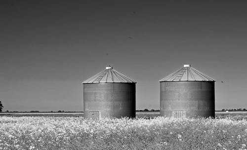 Grayscale Photography of Two Silo on Grass