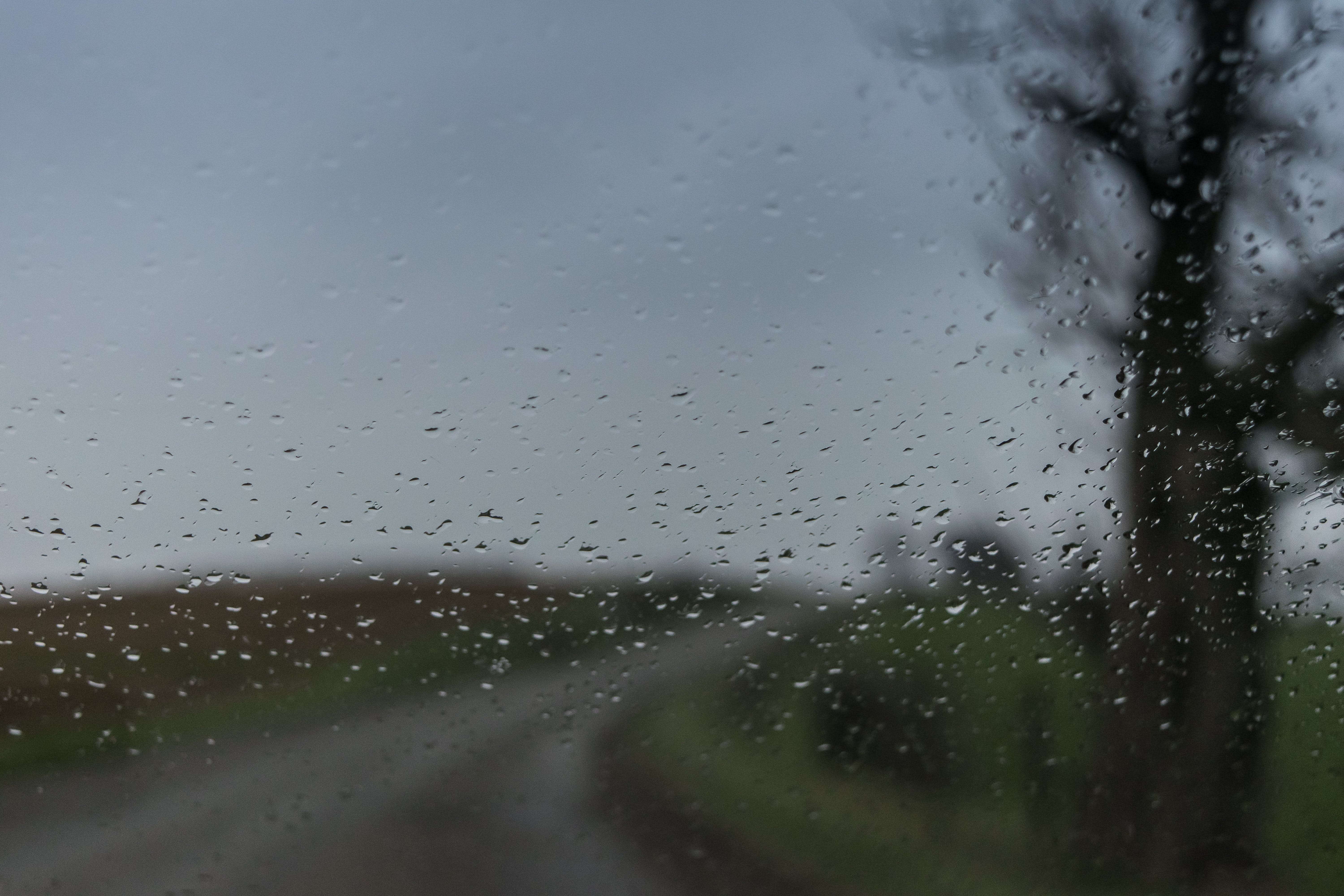 Free stock photo of glass, rain, road