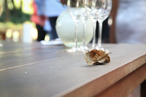 Fotobanka sbezplatnými fotkami na tému fotografie Tracey Shaw, párty, poháre na víno, svadba