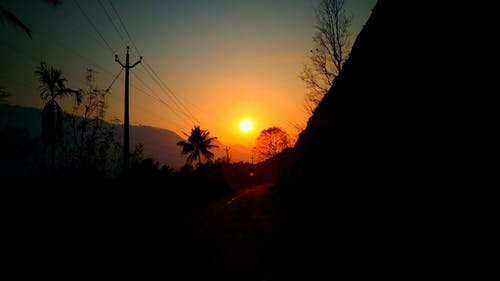 Darmowe zdjęcie z galerii z ciemny, droga, las, słońce
