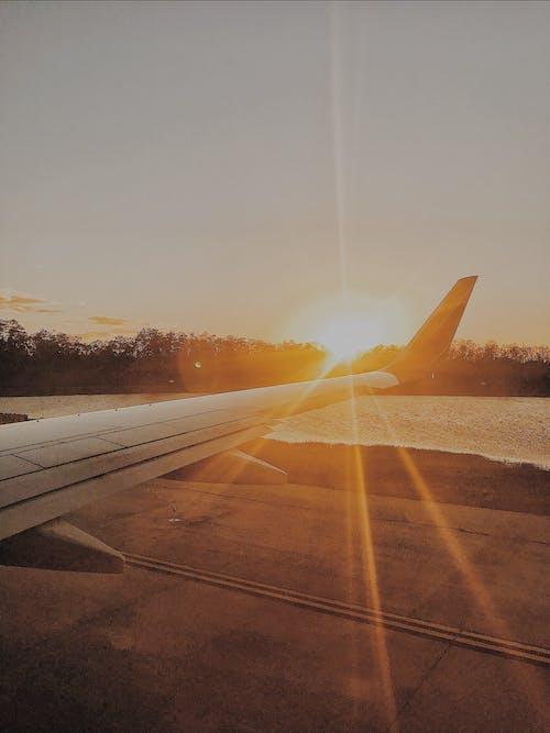 Foto profissional grátis de aeronave, aeroporto, água, alvorecer