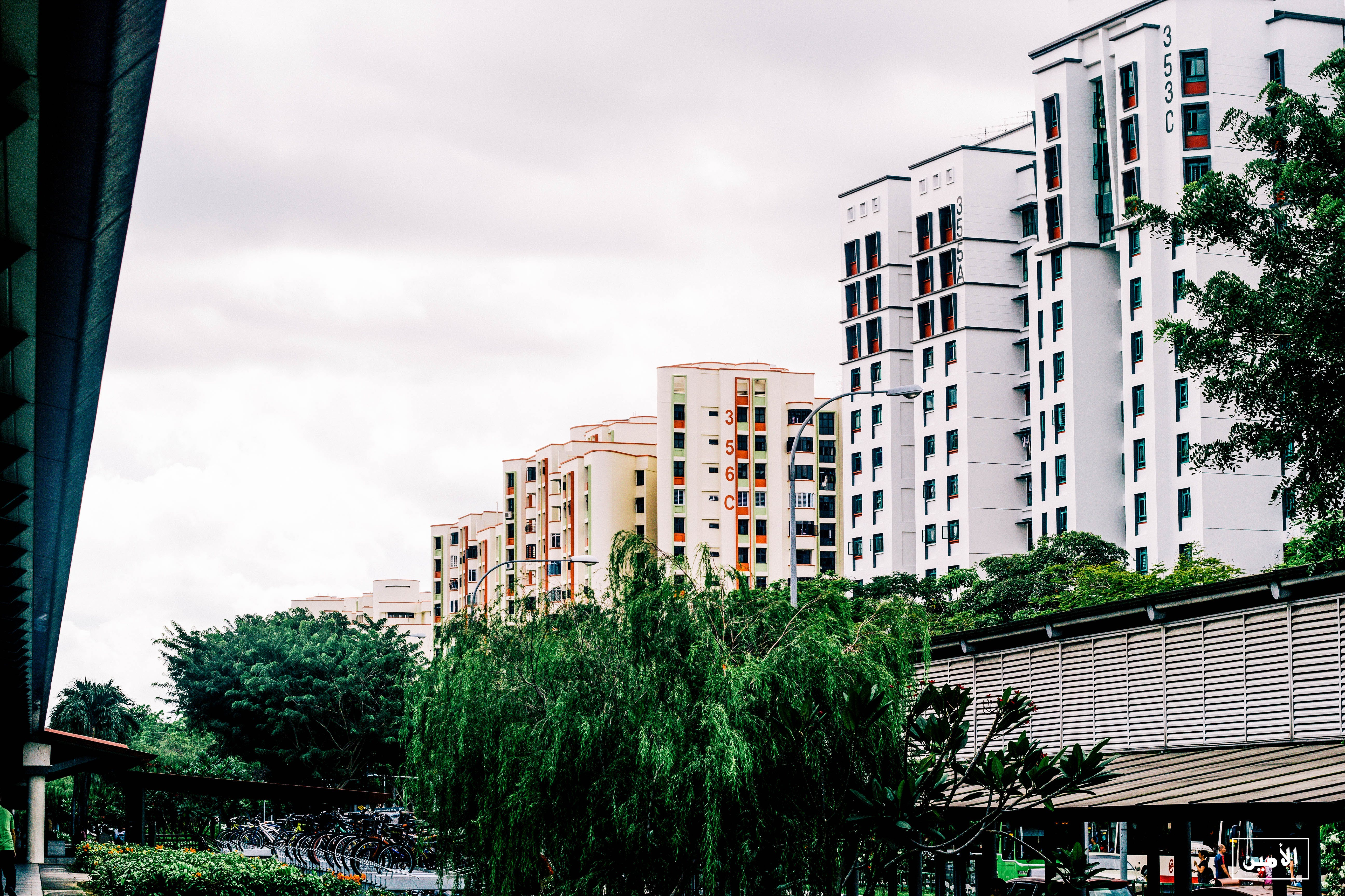 Free stock photo of Green&Cleanland, singapore