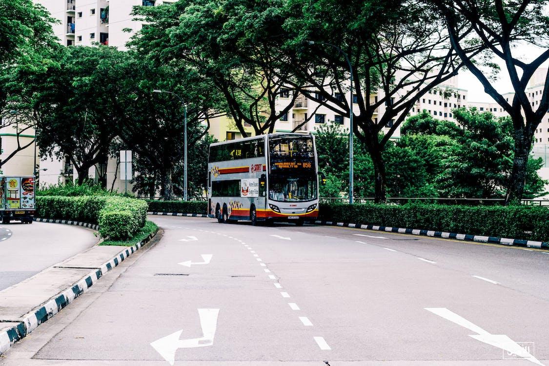 Photo of Gray and Orange Bus