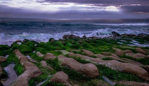 Δωρεάν στοκ φωτογραφιών με rock, ακτής του ωκεανού, απόγευμα, αυγή