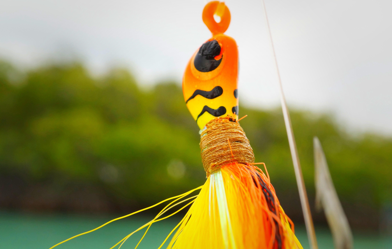 Fotos de stock gratuitas de anzuelo de pesca, aparejo de pescar, enganchar, macro