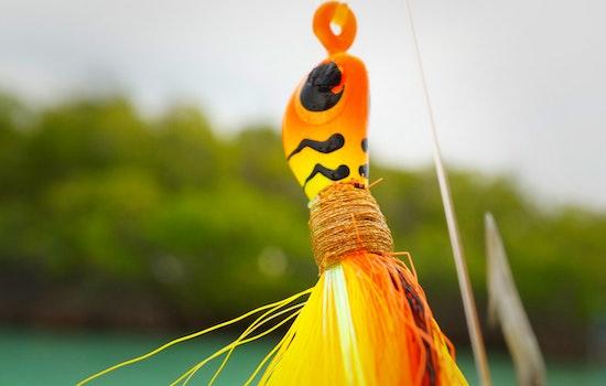 Free stock photo of fishing, fishing tackle, macro, lure